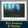 Buy Posters & Photos